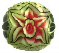 Wassermelone Orchidee