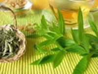 Fragrance oil -  lemon verbena